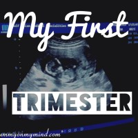 My First Trimester...