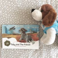 Toby and The Falcon - Book Review...