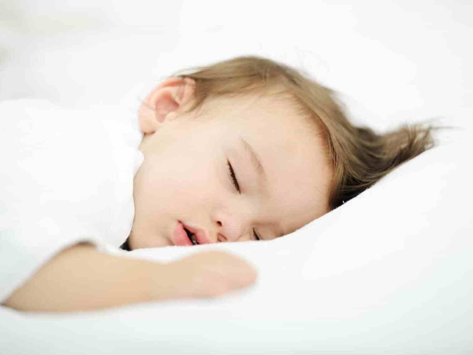Toddler Pillows