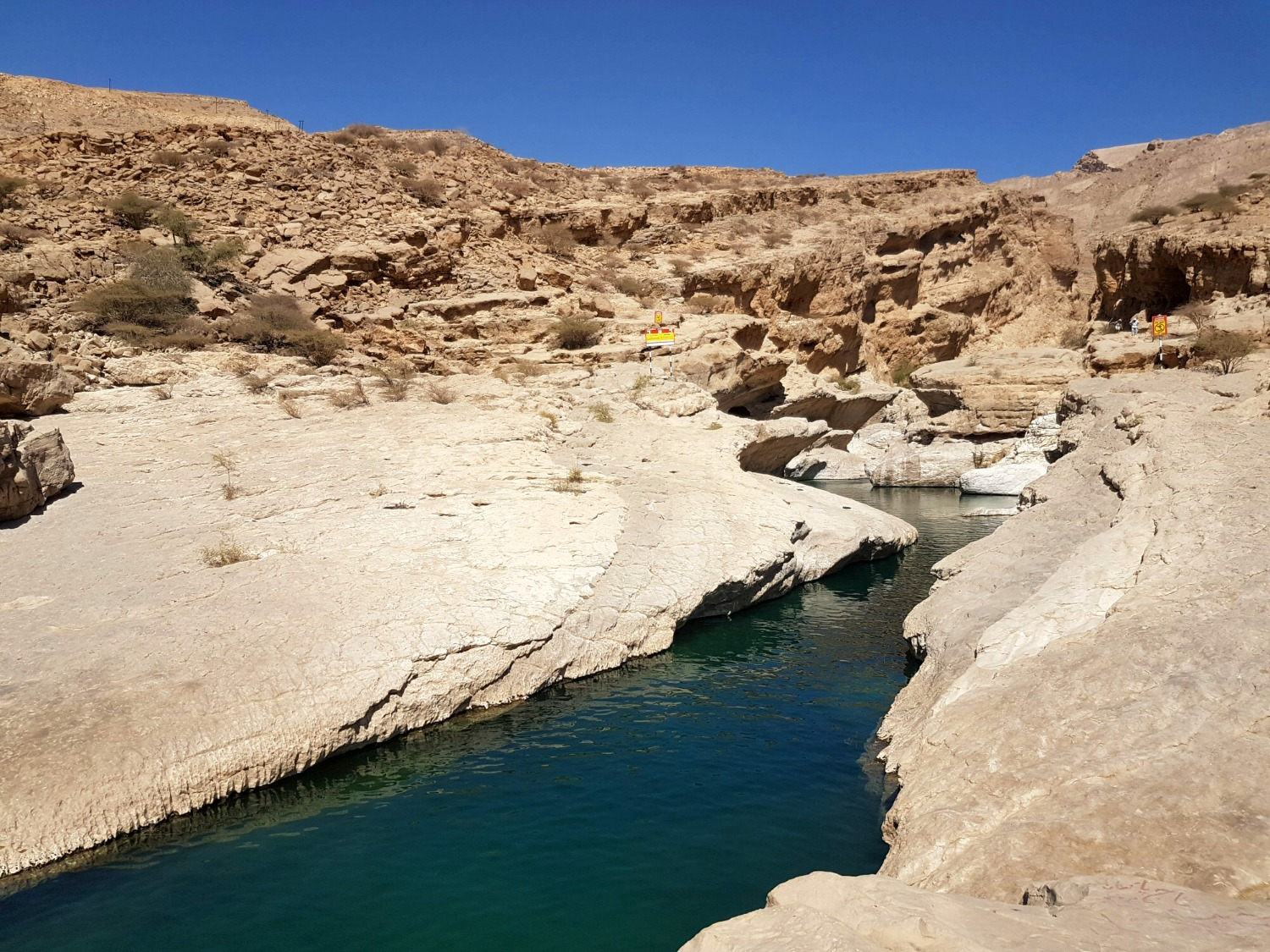 The waters of Wadi Bani Khalid curving through the rock of the Hajar Mountains in Oman - my nine reasons to visit Oman with kids