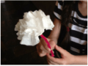 MW Tissue Paper Flowers8