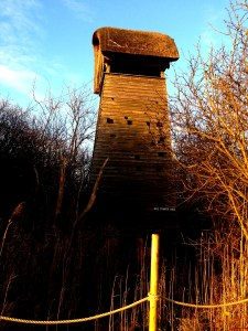 Wicken Fen, Mumof2, great day out