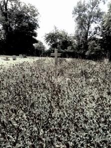 graveyard, mumof2
