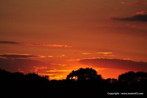 sunset, mumof2