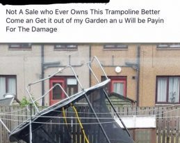 Trampoline Causes Heated Argument