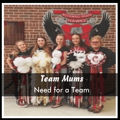 Need for a Team