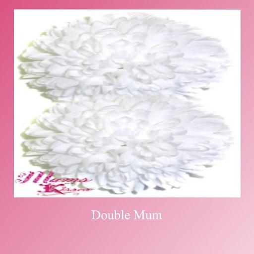 Double Mum No Decor