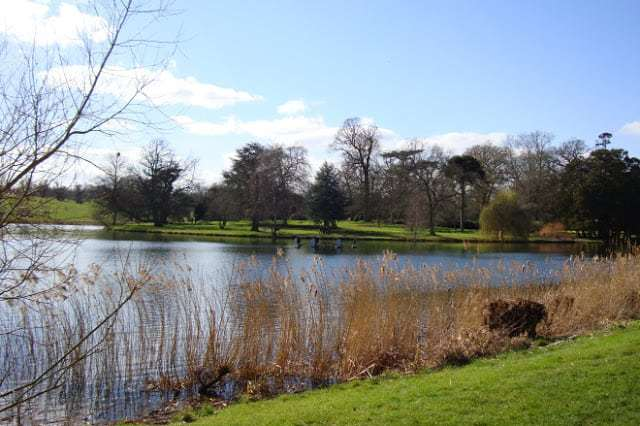 Serpentine lake, Burghley