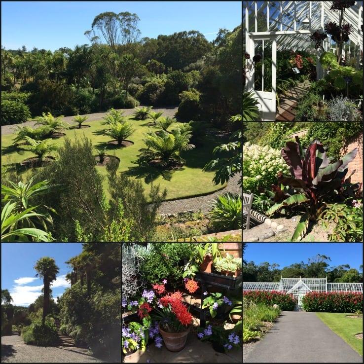 Logan Botanic Gardens Dumfries and Galloway