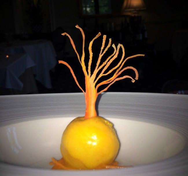 carrot sorbet, Blackaddie Hotel
