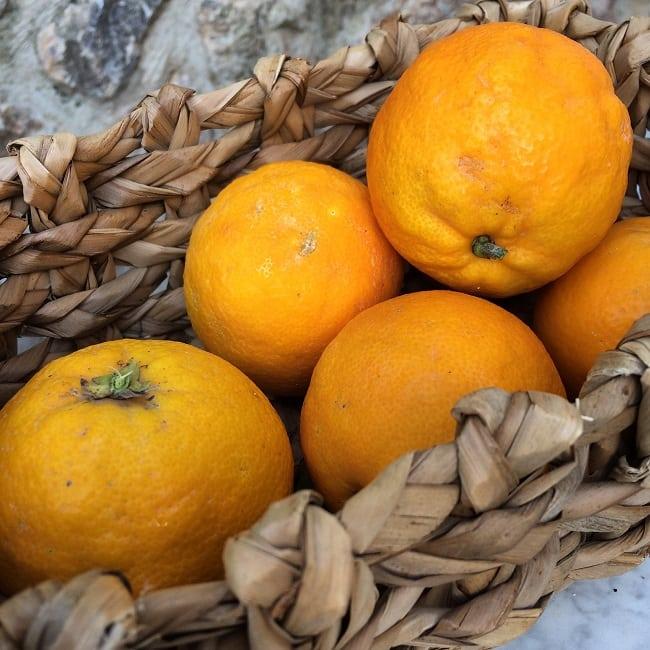 basket of oranges