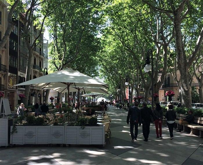 Passeig des-born street in Palma