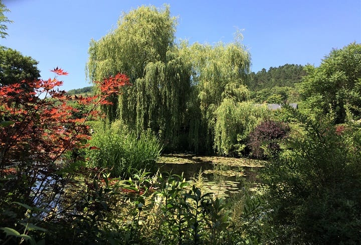 Japanese water garden, Giverny