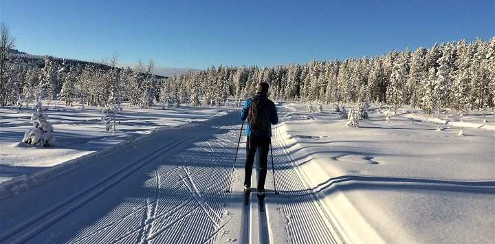 Cross-country ski trail, Ylläs, Lapland