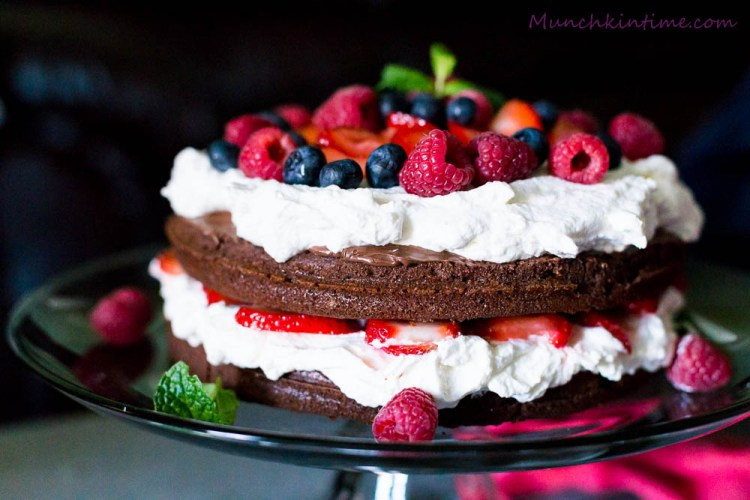 Chocolate Nutella and Strawberry Cake