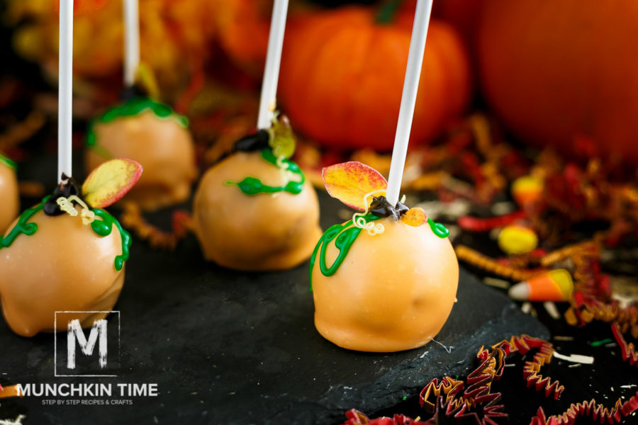 Hazelnut Pumpkin Cake Pop Recipe with step by step pictures and video. They are super easy to make and taste so delicious!