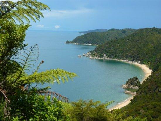 playa abel tasman