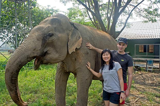 Pol-y-Mati-en-Elephants-Nature-Park