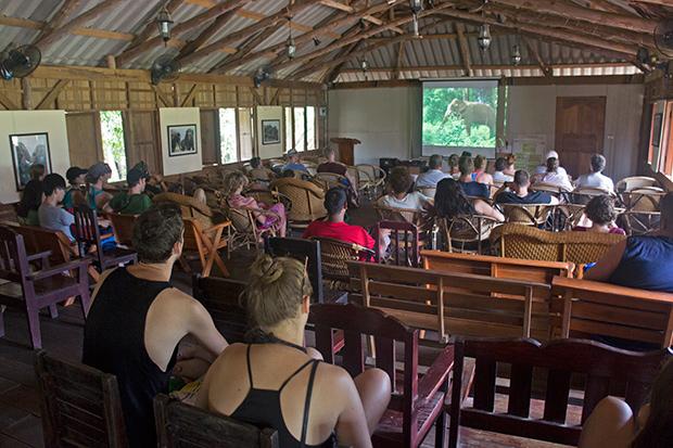 Sala-de-vídeos-Elephant's-Nature-Park