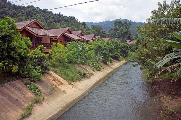 Khao-Sok-Rainforest
