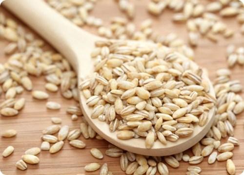 barley-1_thumb