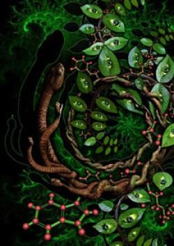 serpente_ayahuasca_capa