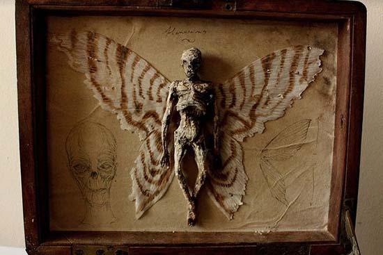 Corps de créatures étranges - Corps de créatures étranges trouvés dans le sous-sol d'une vieille maison de Londres