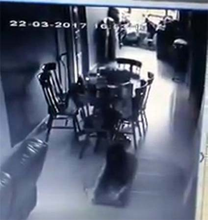 maid possessed by demonic entities