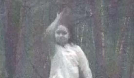 fille fantôme dans la forêt de New York - Un appareil photo photographie une fille fantôme dans une forêt de New York