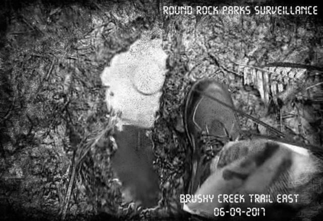 evidence of Bigfoot in Texas