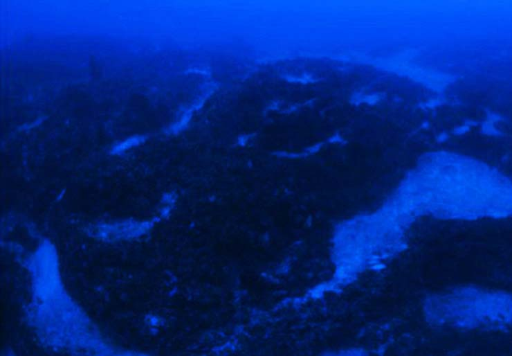 nave triangulo bermudas - Un explorador de Discovery Channel descubre una nave extraterrestre en el Triángulo de las Bermudas