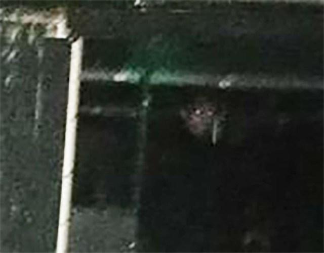 rostro demoniaco quemado - Fotografían el rostro demoníacode un monje en el mismo lugar donde murió quemado hace 500 años