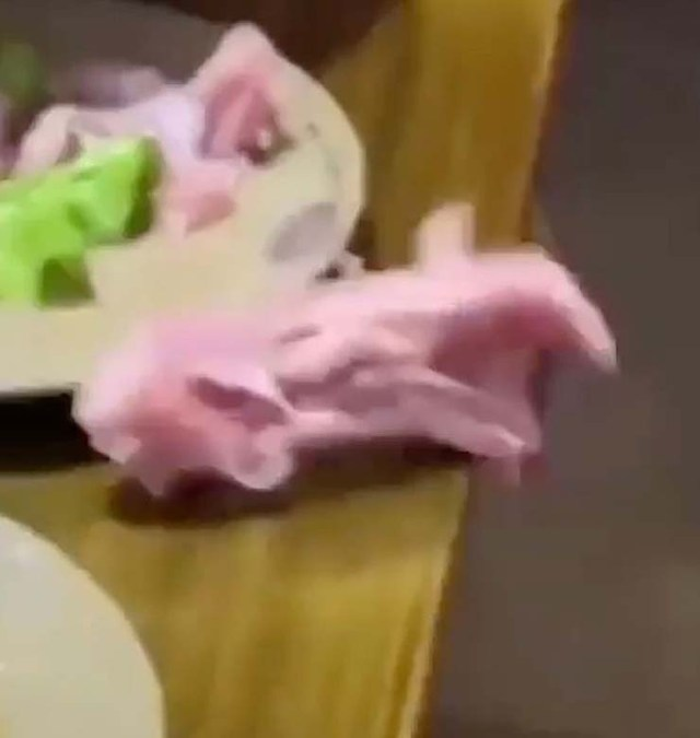 zombie meat - A video shows a piece of raw zombie meat crawling out of a plate