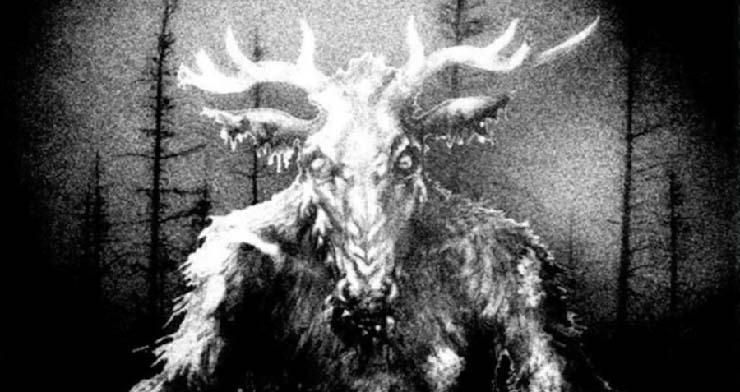 hurlements terrifiants dans une forêt canadienne - Les biologistes ne peuvent pas expliquer les hurlements terrifiants dans une forêt canadienne