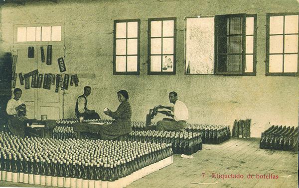 CABREIROA1906