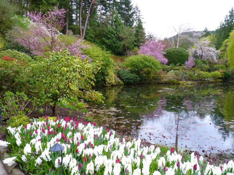 Butchart Gardens 10 Victoria Canadá Mundo Indefinido