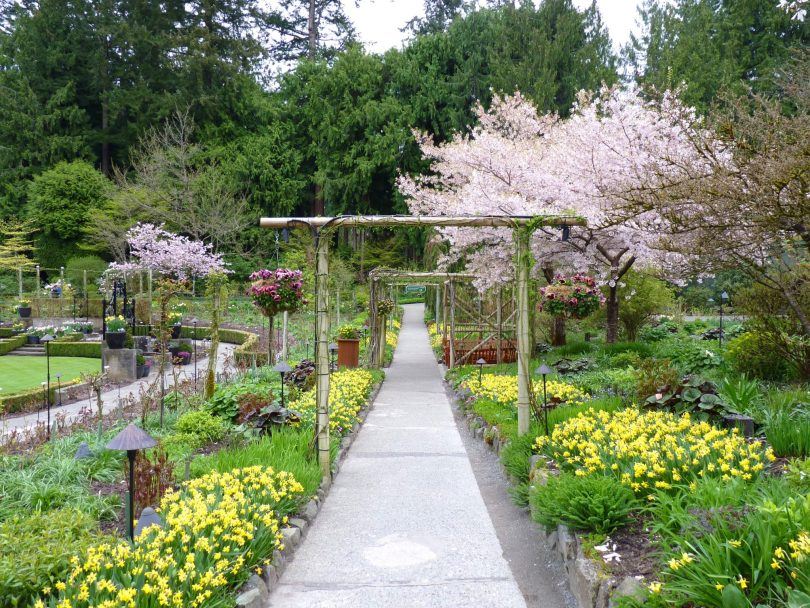 Butchart Gardens 17 Victoria Canadá Mundo Indefinido