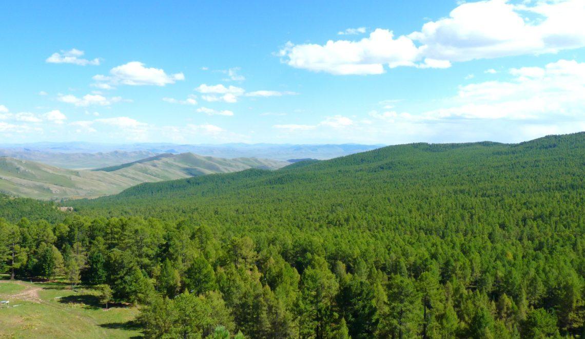 Pelo interior da Mongólia: dia 3 no país dos nómadas