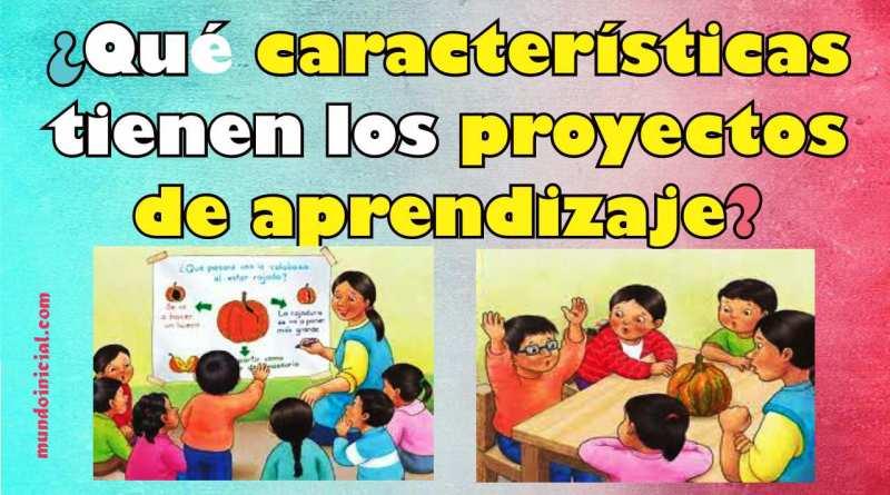 qué características tiene el proyecto de aprendizaje