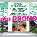 Guías ENTORNO COMUNITARIO, ENTORNO FAMILIAR para promotores PRONOEI