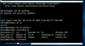 Captura del la consola de Linux en Windows 10
