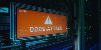 DDoS Protection Standard