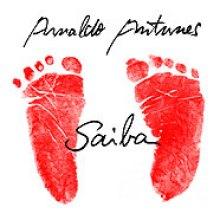 Arnaldo Antunes – Saiba (2004)