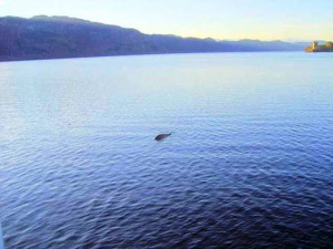Nueva fotografía de Nessie 2012 – Hombre tiene prueba del monstruo del Lago Ness