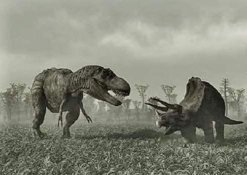 Cuerno de Triceratops data de 33.500 años