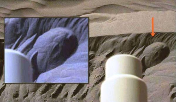 Curiosity capta extraña roca con forma de cabeza de lagarto