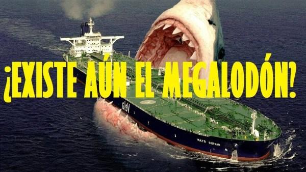 ¿Existe aún el Megalodón?