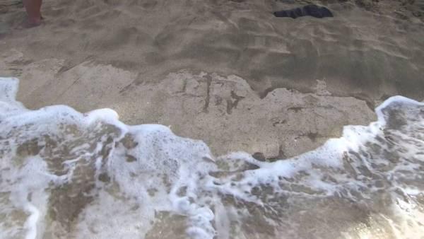 Descubren Preciosos Petroglifos En Hawái