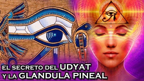 El secreto del UDYAT y la glándula pineal