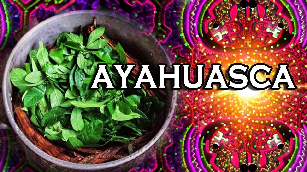 ¿Los efectos de la Ayahuasca causan un Contacto con seres Metafísicos?